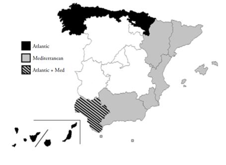 El rol de España y sus regiones en los programas de Cooperación Territorial Europea